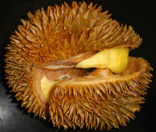 durian_splitting.jpg